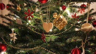 Historie vánočních stromků