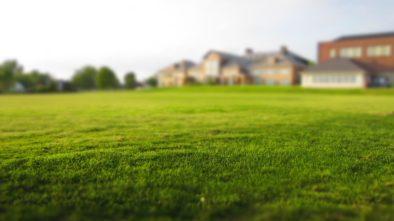 Jak pečovat na jaře o probouzející se trávník?