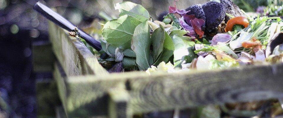 Jak správně kompostovat. Co do kompostu patří a co ne?